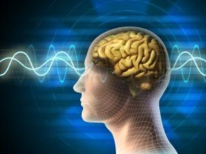 Brain-waves-2